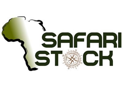 Safari Stock